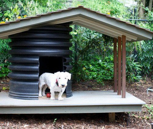 Creative Dog House Design Ideas 31 Pictures Cool Stuff For Dogs