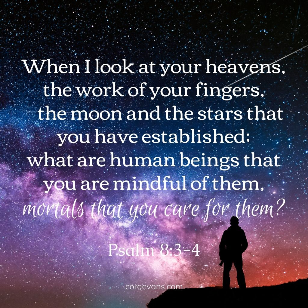 what are human beings that you are mindful of them mortals that you care for that you care for them