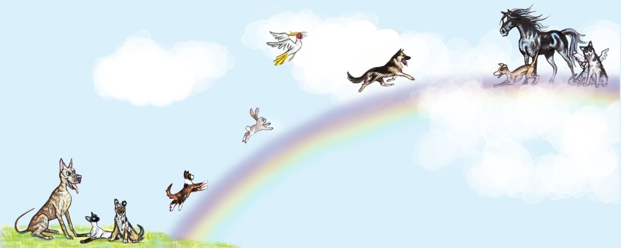 All Pets Go To Heaven Avec Images Animaux Chien Illustration