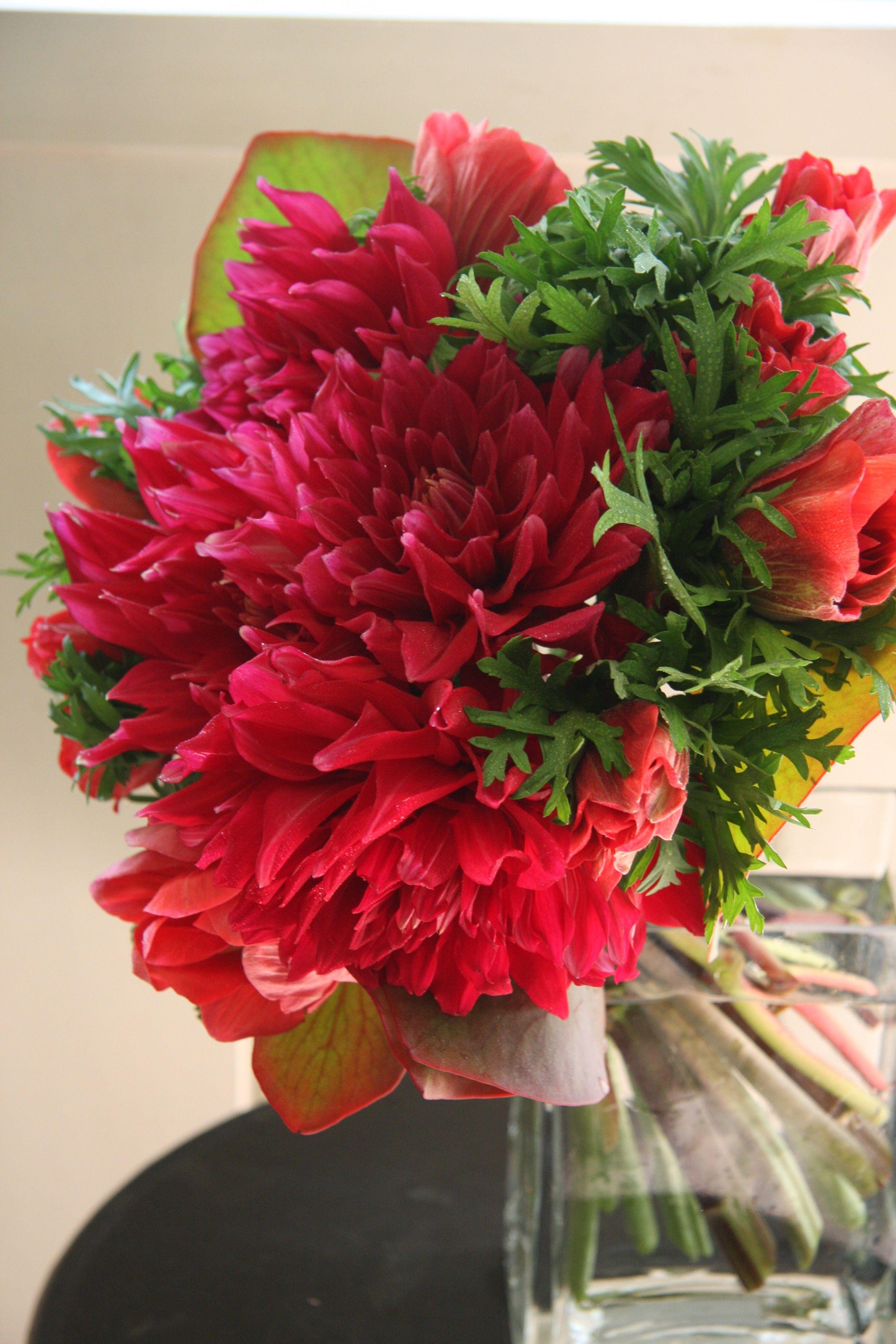 Dahlia and anemone special flowers pinterest dahlia and flowers dahlia and anemone flower arrangementfloral arrangementstable izmirmasajfo Images