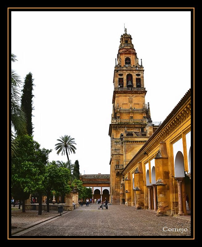 Patio de los Naranjos,  Cathedral of the Assumption of Our Lady - Cordoba, Spain Copyright: Angel Cornejo