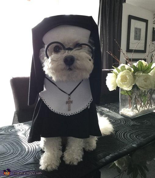 Nun Halloween Costume Contest At Costume Works Com Pet
