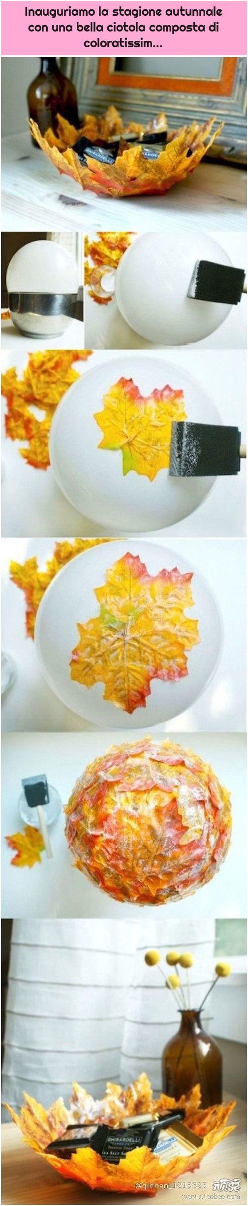 Inauguriamo la stagione autunnale con una bella ciotola composta di coloratissim...