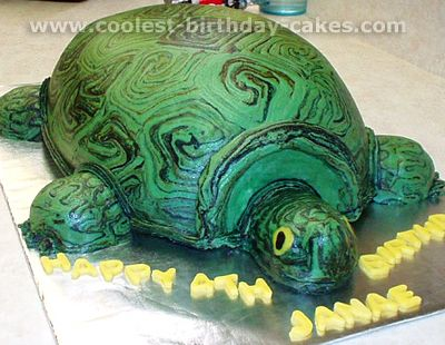 Coolest Turtle Cakes and Other Unique Cakes Birthday cake pictures