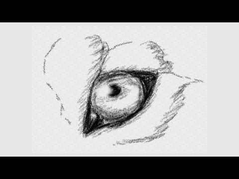 Check out this easy tutorial on how to draw a beautiful wolf's eye! #art #lesson #video #easy #beginner #animal #drawing