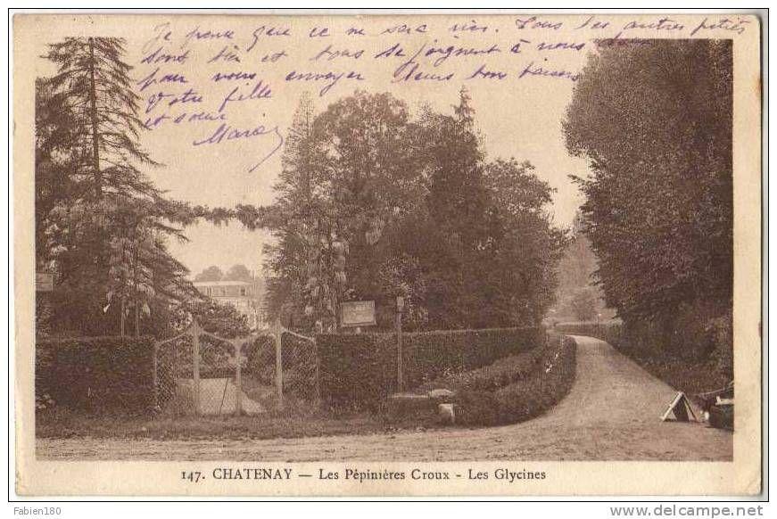 147. CHATENAY - Les Pepinieres Croux - Les Glycines
