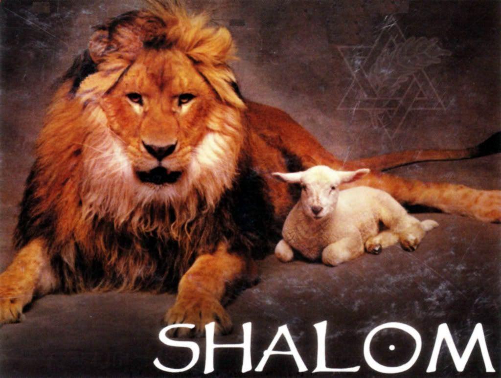 lion and lamb logo - Google Search   leon de juda   Pinterest   León ...