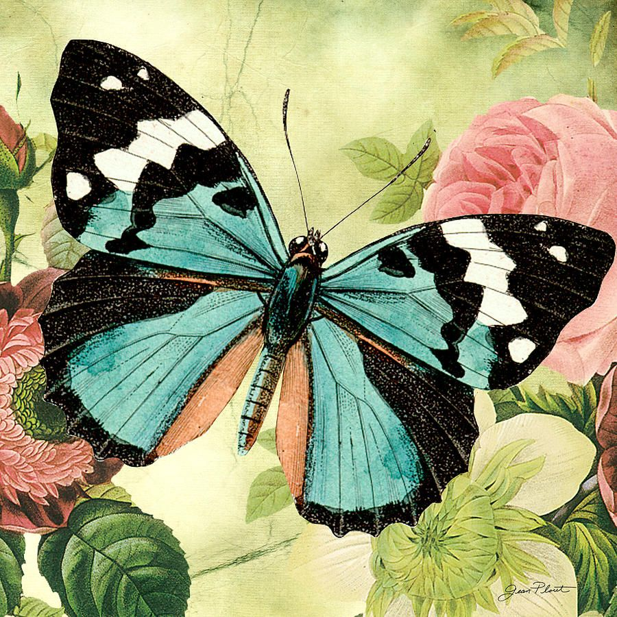 35++ Ladies butterfly art and craft gallery information