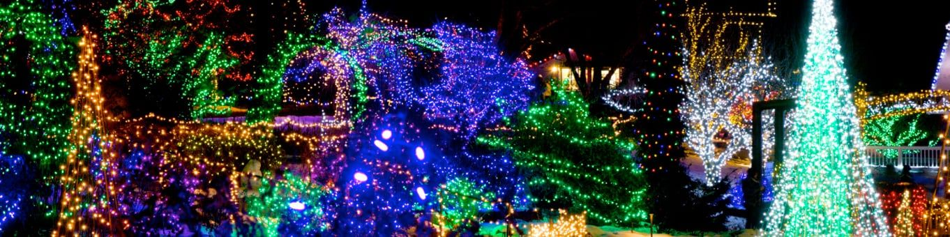 Idaho Botanical Garden Lights in 2020 Botanical gardens