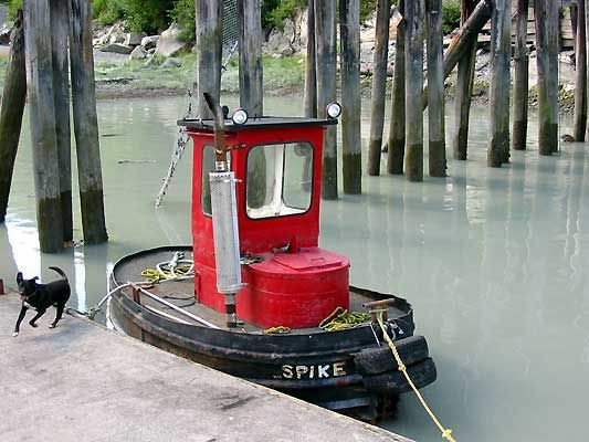 mini tug boat, used in sawmill log pond. SRG | Tug boats ...