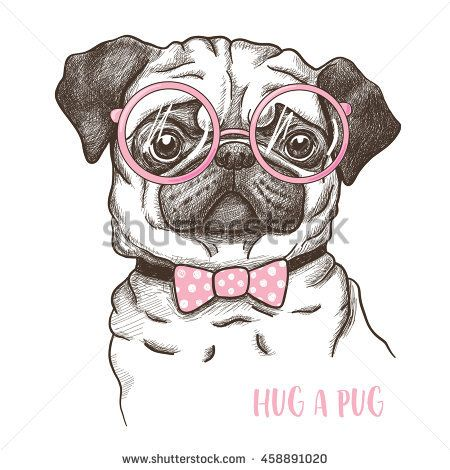 Vector illustration of a hand drawn funny fashionable pug ...