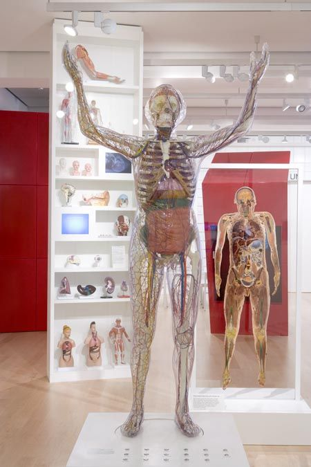 medicine now wellcome collection - Google Search