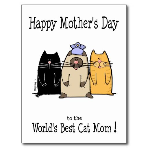 Happy Mother S Day World S Best Cat Mom Postcard Zazzle Com Happy Mothers Day Mom Cards Cat Mom