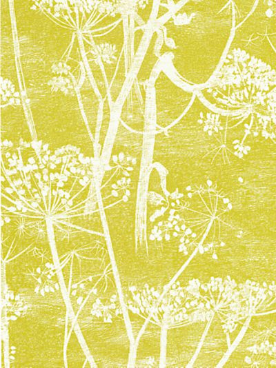 Cole & Son Cowparsley wallpaper with dark grey contrasting wall.