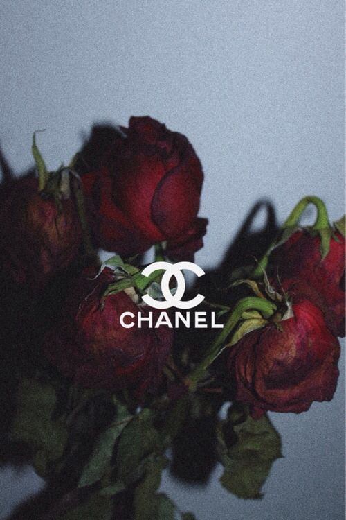 Chanel Rose And Red Image Edgy Wallpaper Aesthetic Iphone