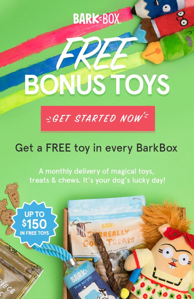 BarkBox Free Gift with Purchase Bonus Toys for 6 or 12