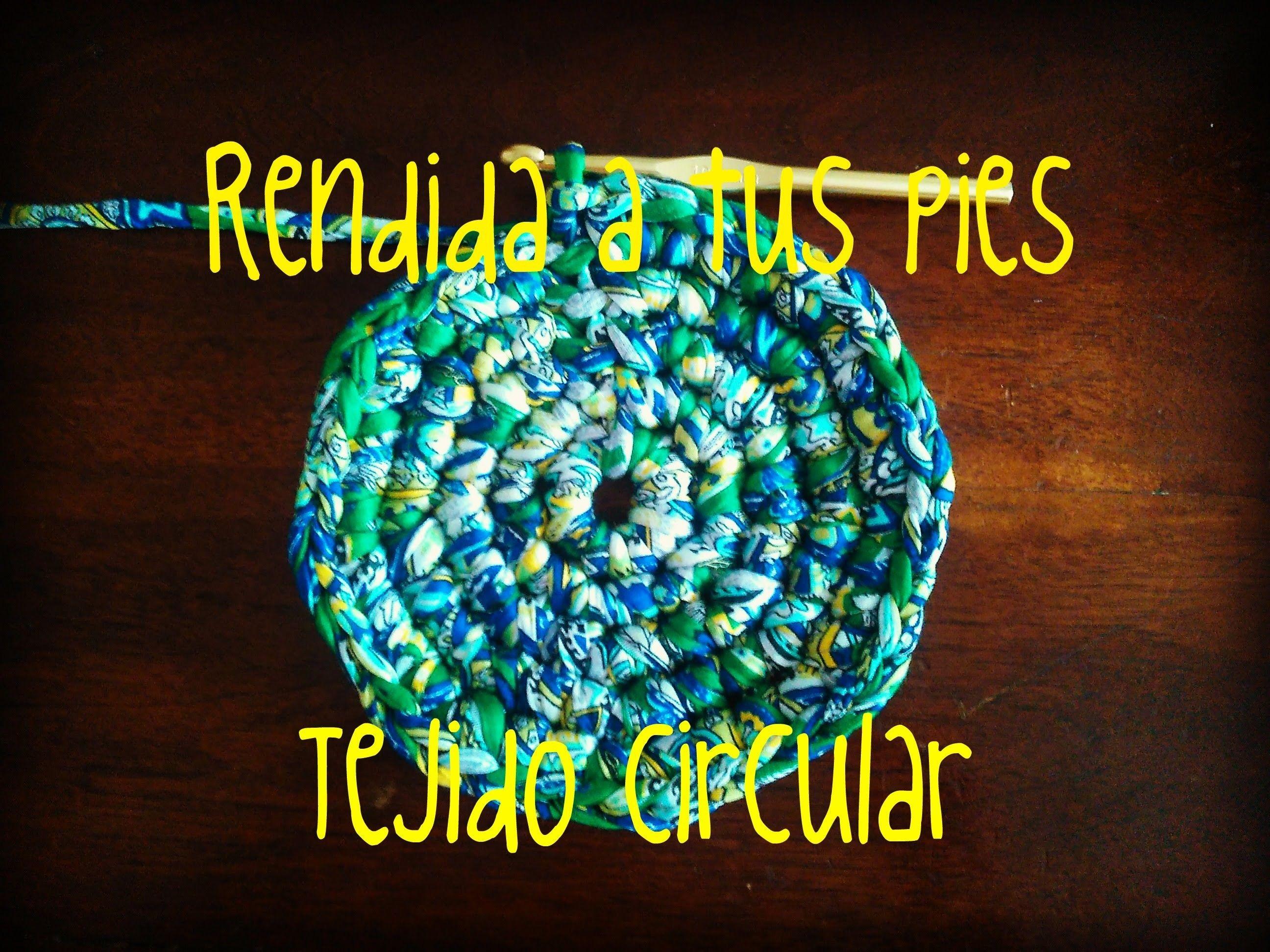 Tejido circular