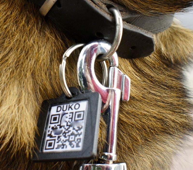 diy dog tags dog collars pinterest dog and dog collars