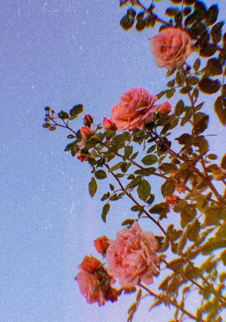 ALUONI 5x3ft Floral,Swirls Daisy Flower Bouquets Beauty Exquisite Flourishing Photography Backdrop Photo Backdrops Portrait Background Studio Props AM013591