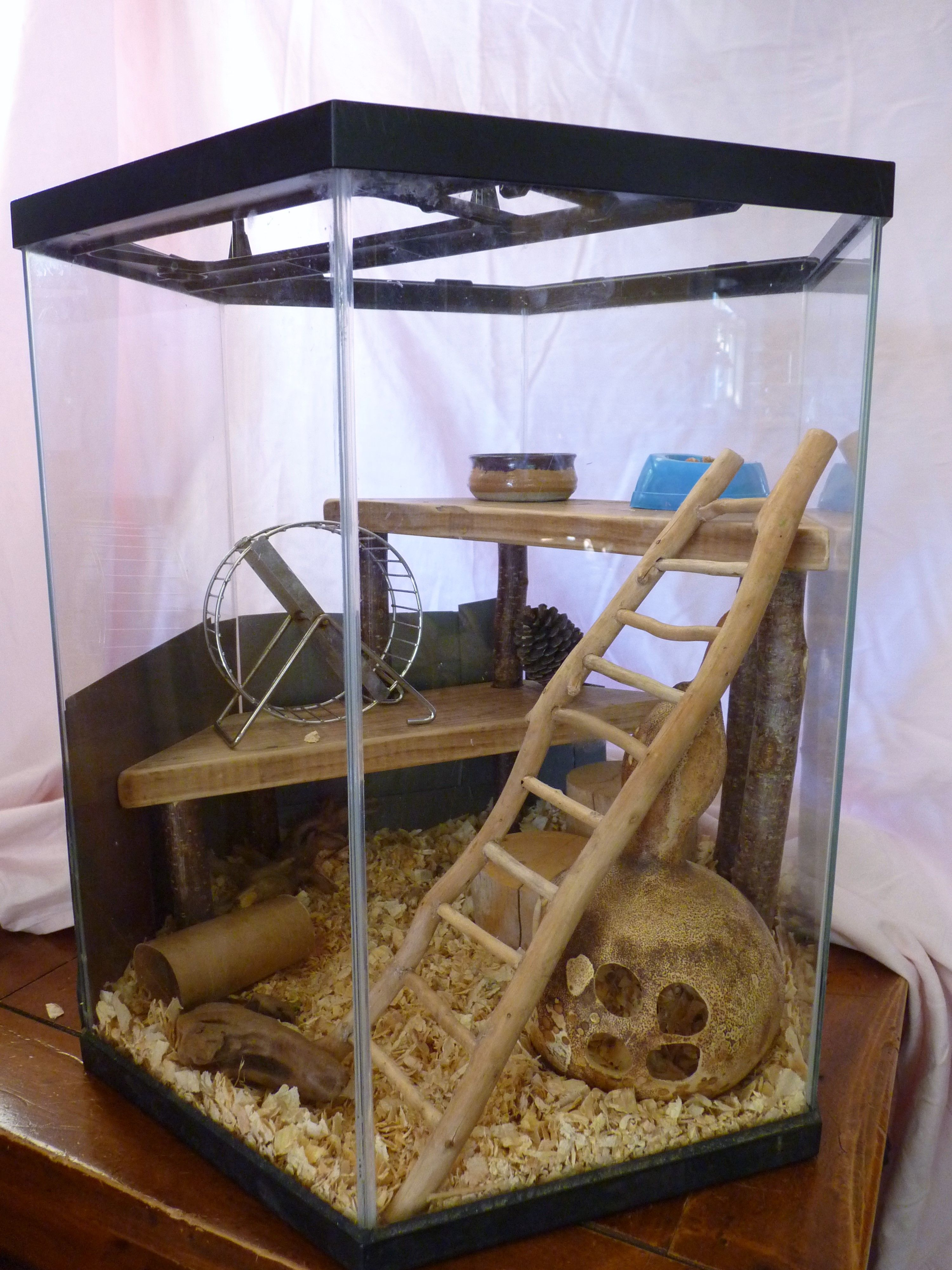 Drift Wood Ladder Two Upper Storeys And A Gourd House All In An Old Fish Tank Which Had Cracks See Duct Tape Repair Job