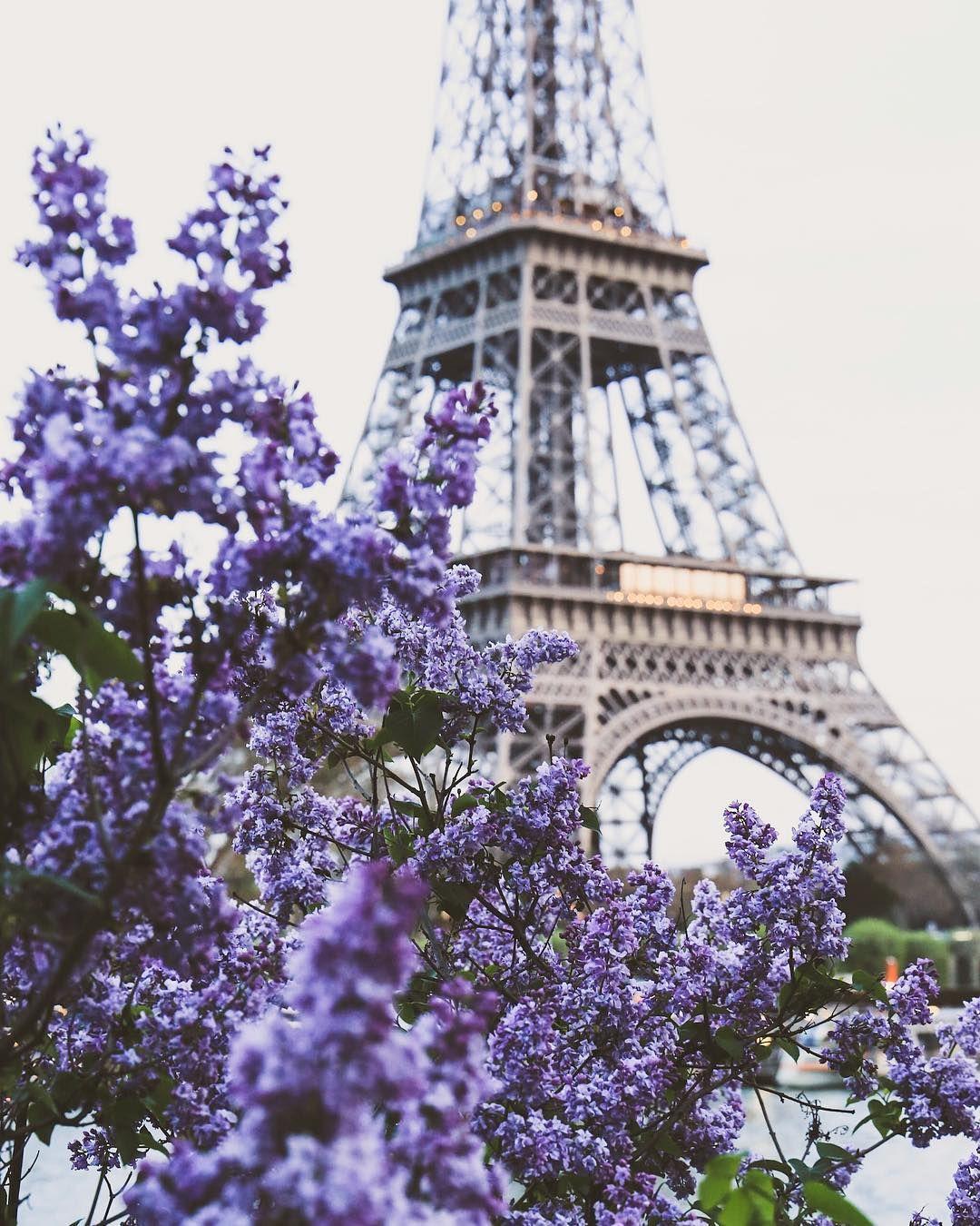 Paris The Eiffel Tower And Purple Flowers Dreamy Shot Fotografia De Paisagem Wallpapers Paisagens Lindas Paisagens
