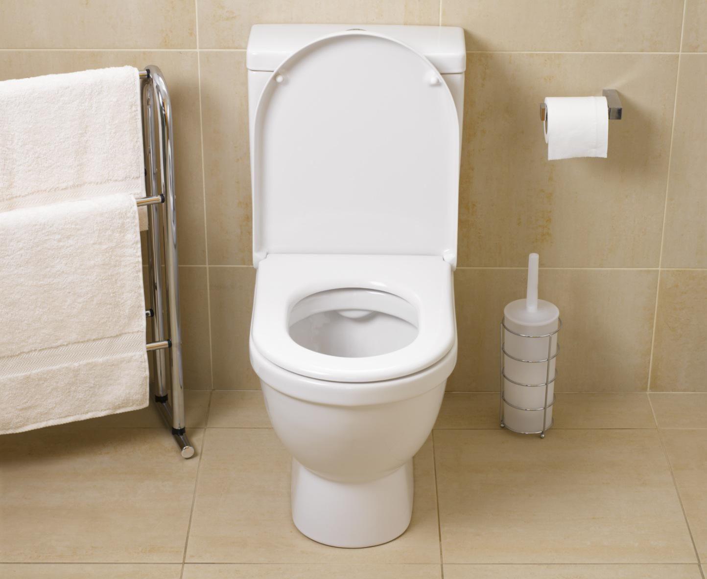 Bathroom clogged toilet - Toilet