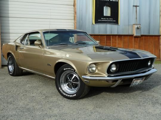 1969 Mustang Fastback Champagne Gold Metallic Had One Of These