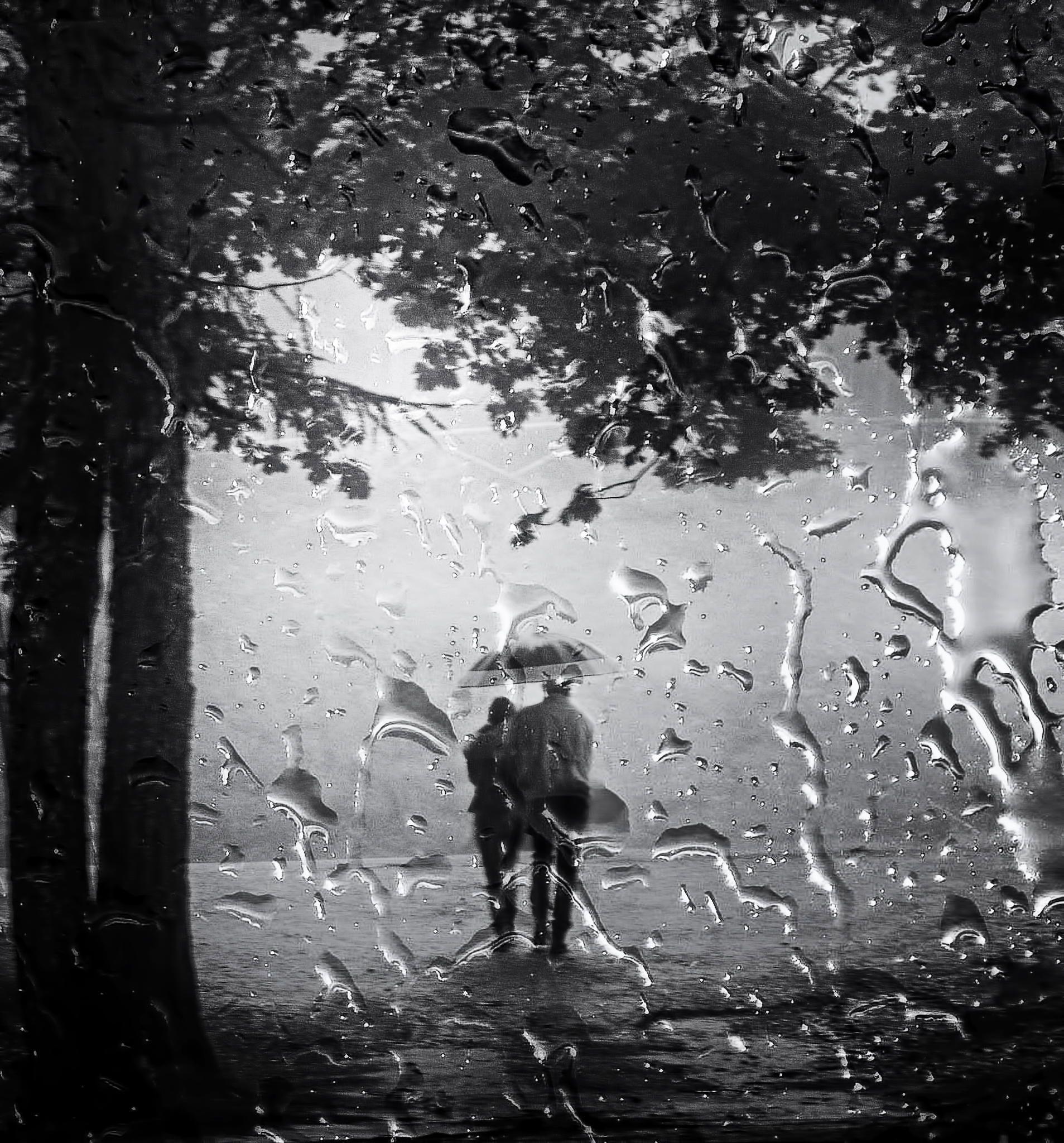 Картинках, двое под дождем картинки фото черно-белые