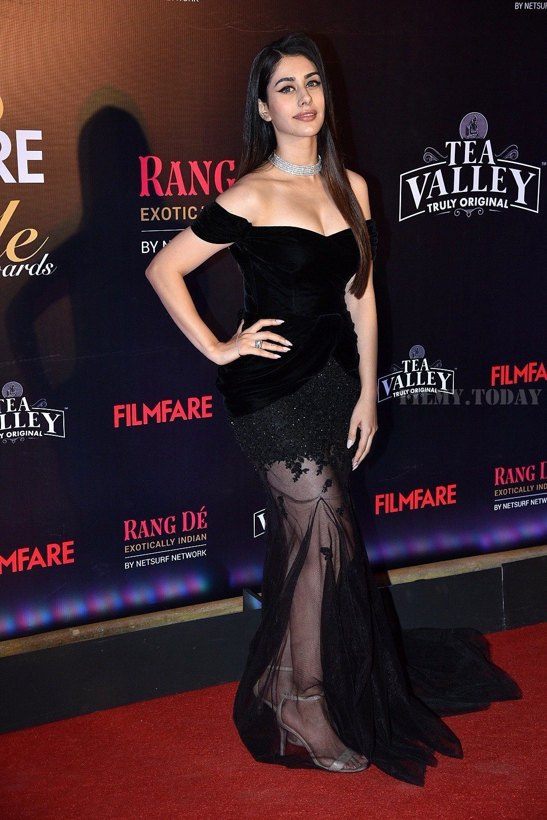 Warina Hussain Photos Red Carpet Of Filmfare Glamour And Style Awards 2019 Bollywood Girls Indian Bollywood Actress Beautiful Indian Actress