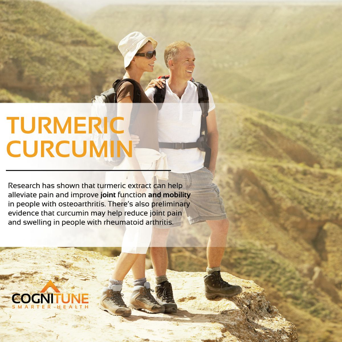 Pure Organic Turmeric Curcumin with BioPerine Black Pepper