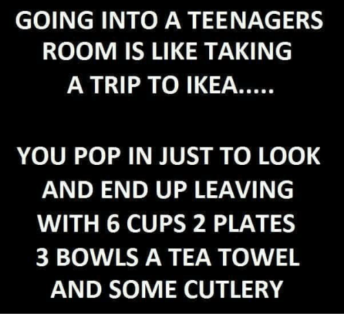 GOING INTO a TEENAGERS ROOM IS LIKE TAKING a TRIP TO IKEA YOU POP IN JUST TO LOOK AND END UP LEAVING WITH 6 CUPS 2 PLATES 3 BOWLS a TEA TOWEL AND SOME CUTLERY   IKEA Meme on ME.ME