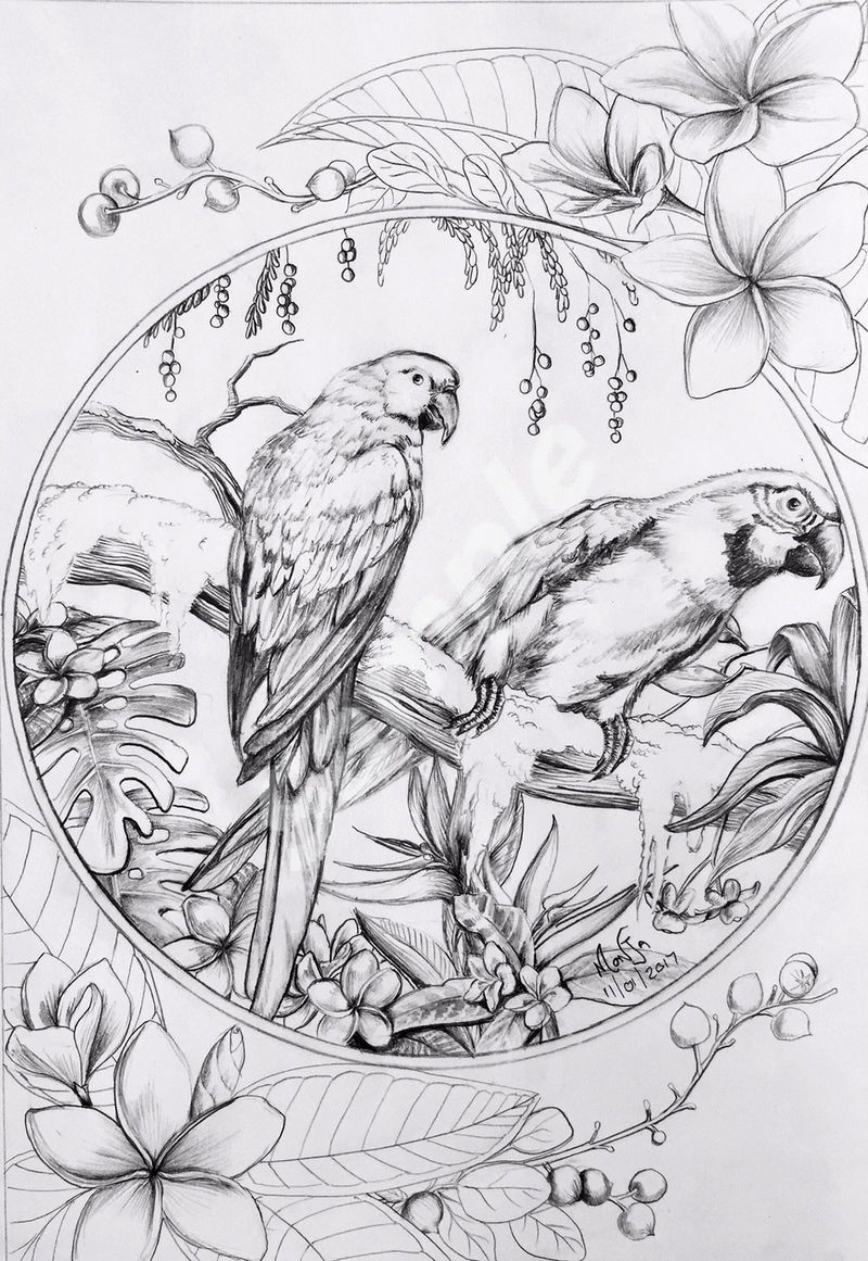 New Images Coloring Sheets Suggestions It S No Solution That Color Books Pertaining To Grown Ups Tend To Be Ex In 2021 Bird Drawings Bird Coloring Pages Coloring Books