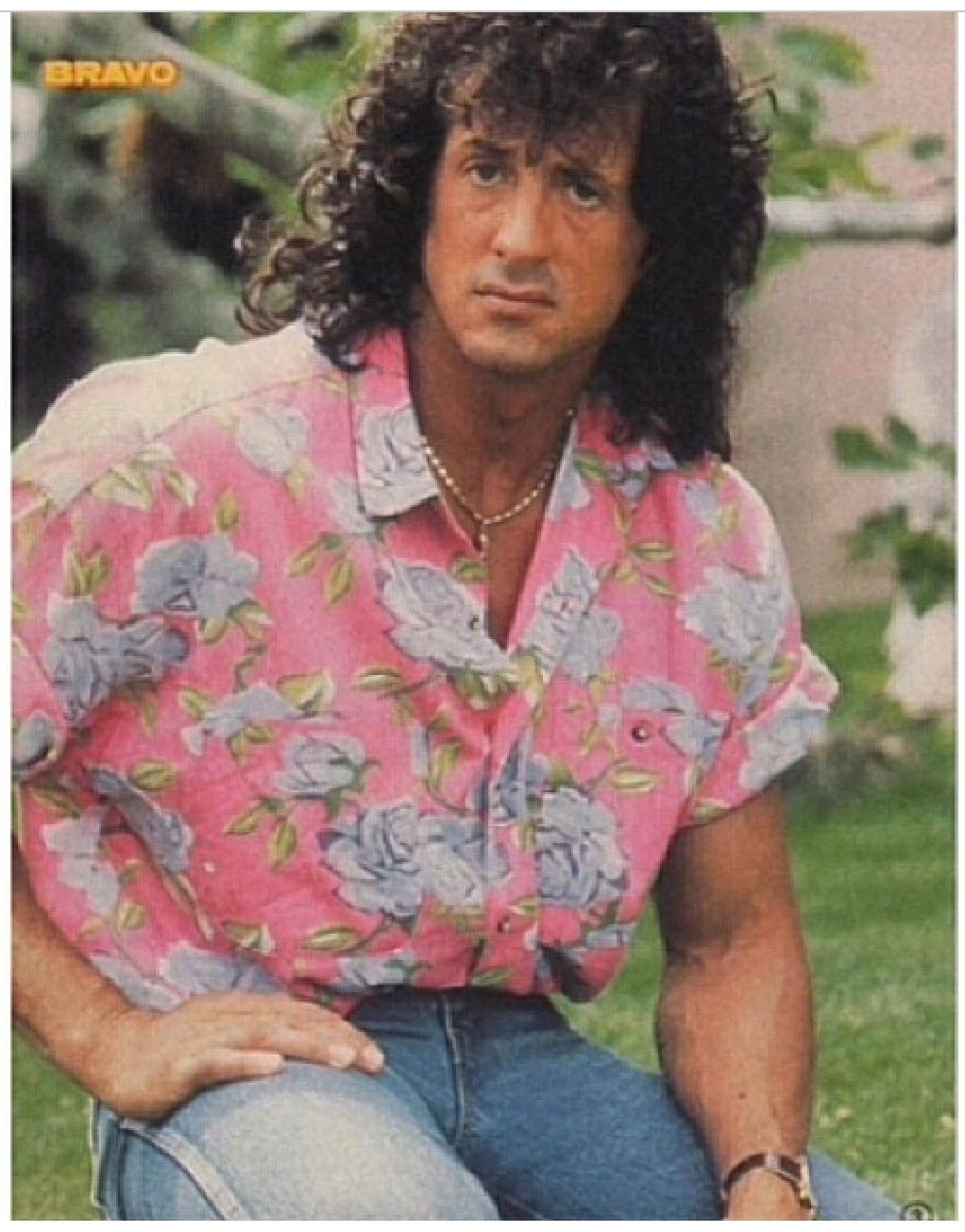 Oh, this pink shirt. I forgive you Sly.   Sylvester ...