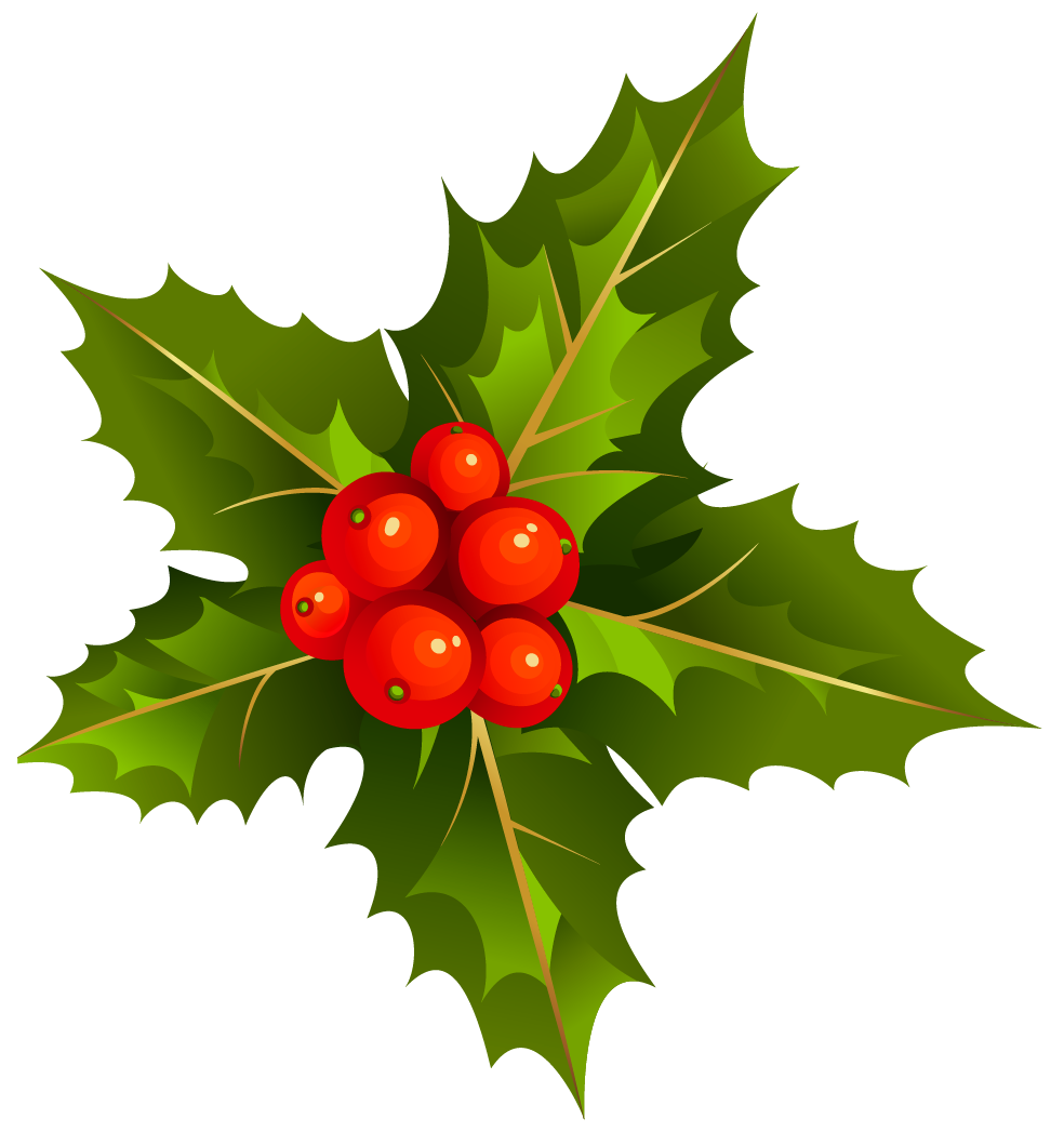 Mistletoe is a tradition for Christmas in many countries