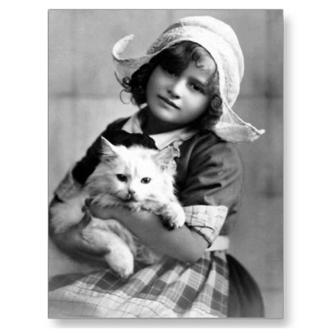 Dutch girl with kitty