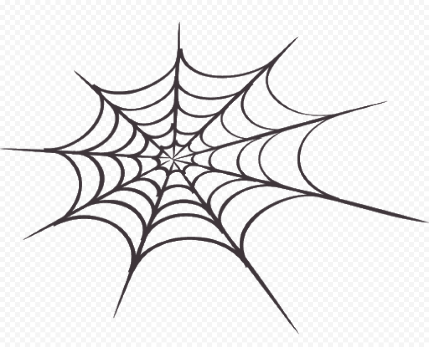 Hd Spider Web Draw Png In 2021 Spider Web Drawing Spider Web Png