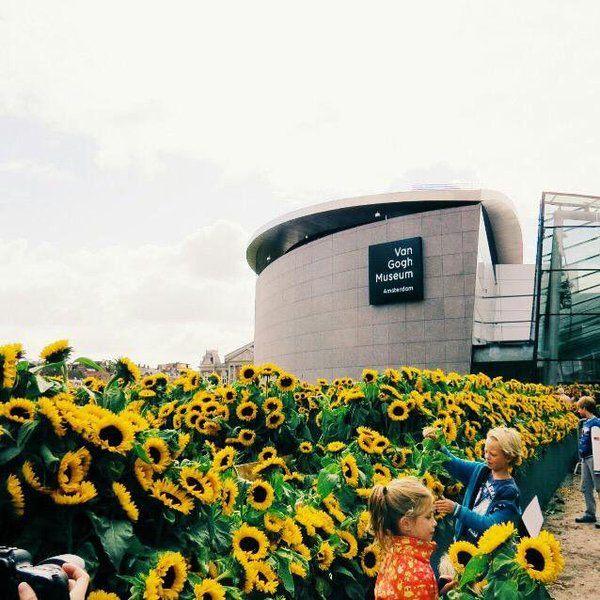 Twitter Van Gogh Museum Amsterdam Today Van Gogh