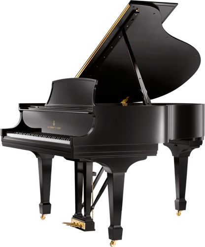 For The Conservatory Steinway Grand Piano Steinway Piano Steinway