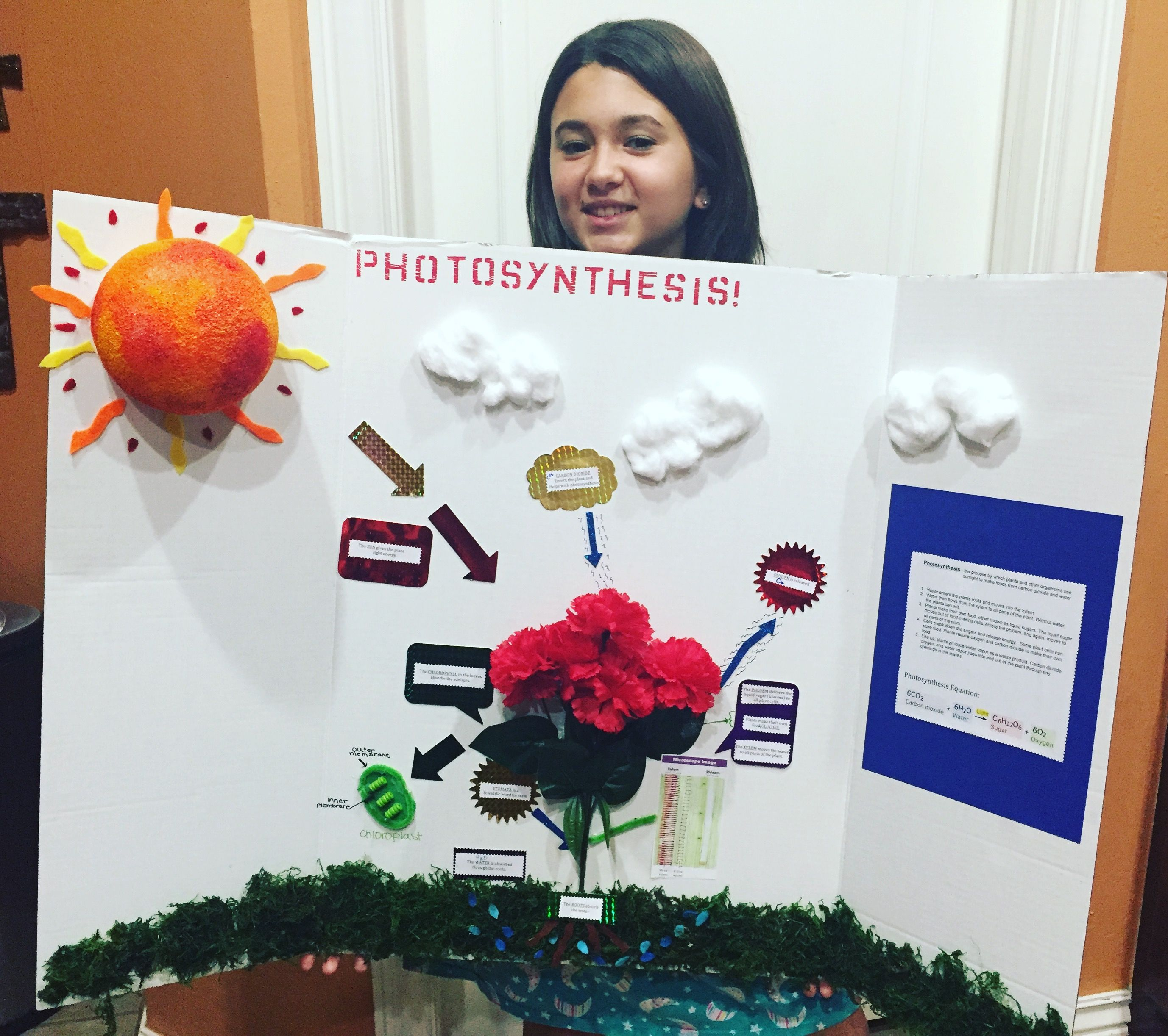 Detailed Video Show How To Make Photosynthesis Model Project for school