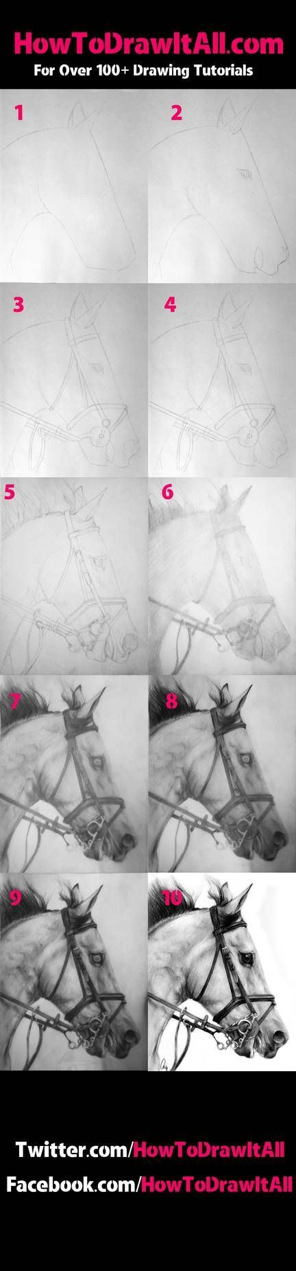 Horse Tutorial by HowToDrawItAll on DeviantArt