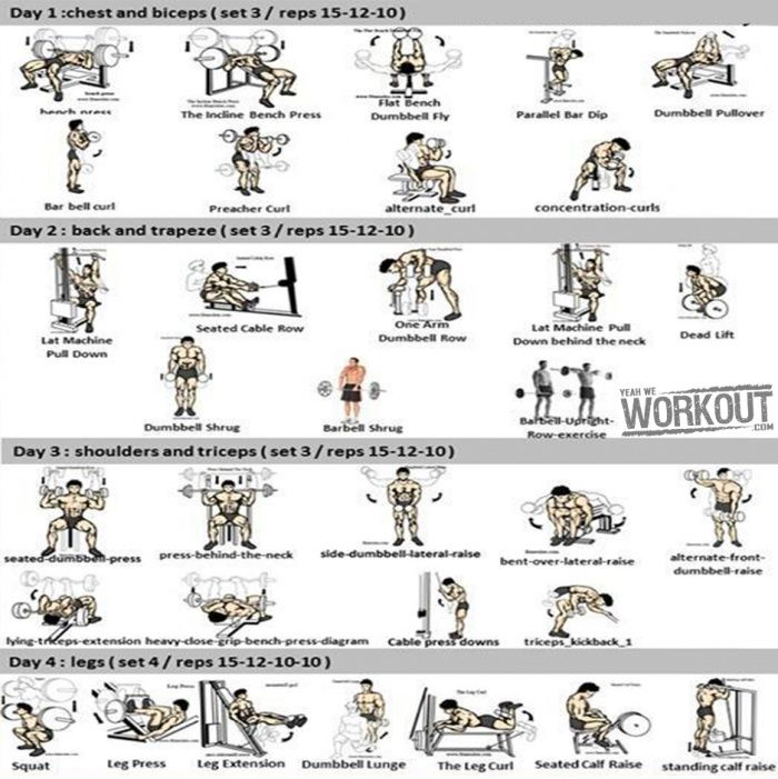 4 Days Full Body Workout Plan