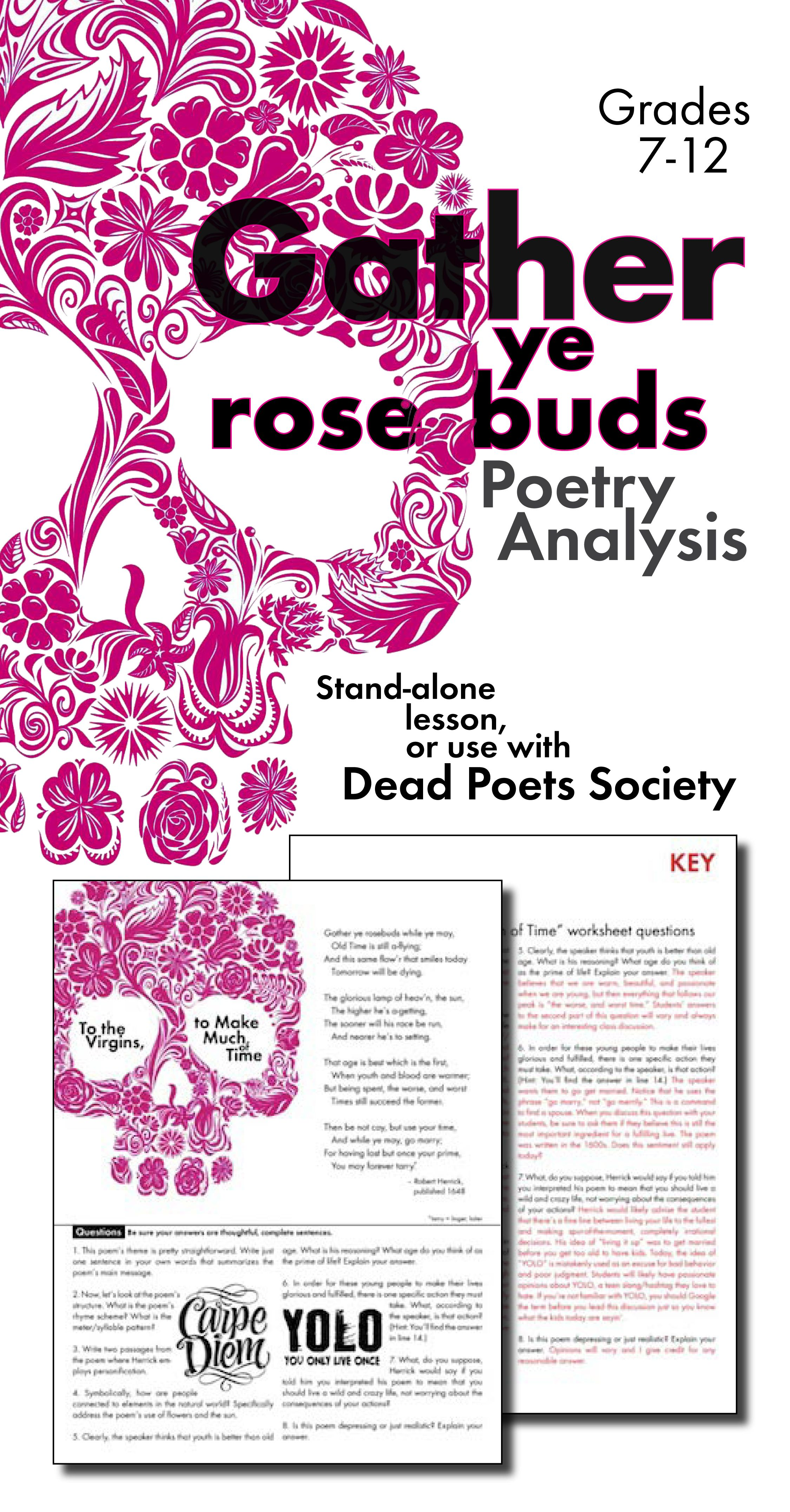 Gather Ye Rosebuds Poetry Analysis Worksheet for Robert