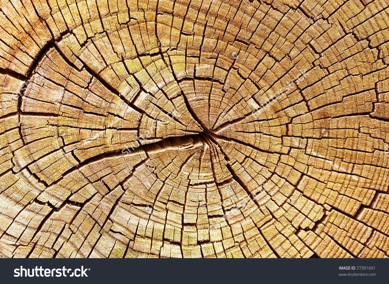 Wooden Texture Stock Photo 77301691 : Shutterstock   mosaic   Pinterest