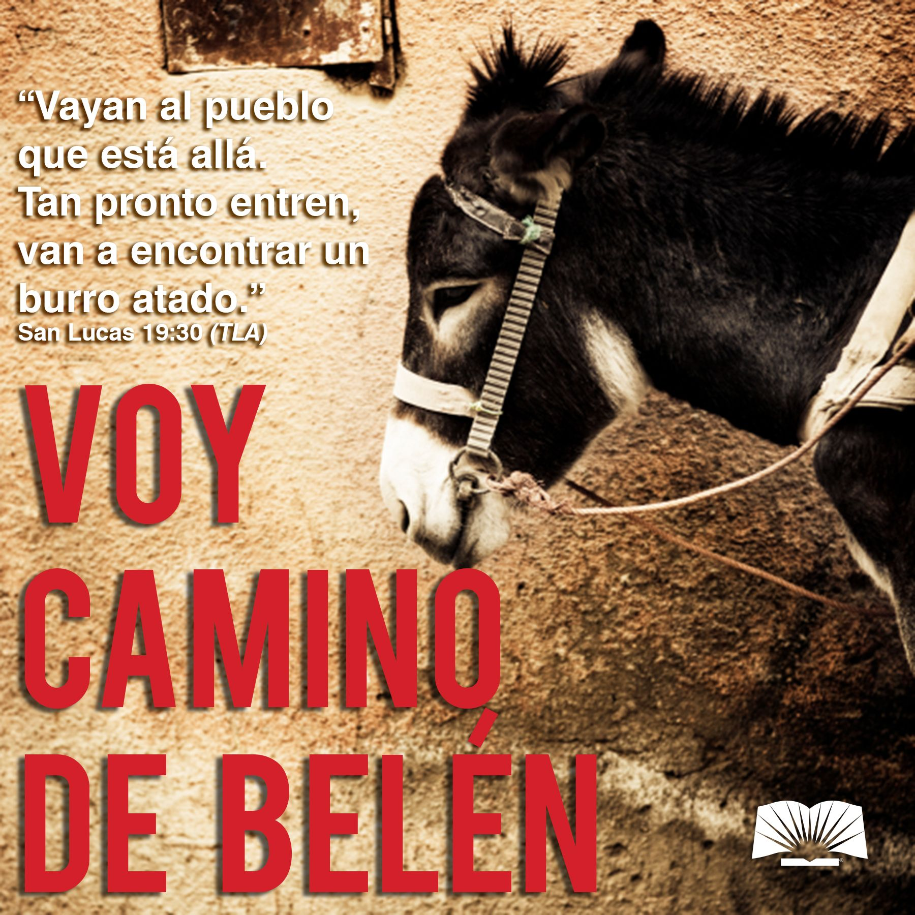 Serie Navideña Mi Burrito Sabanero Movie Posters Poster Movies