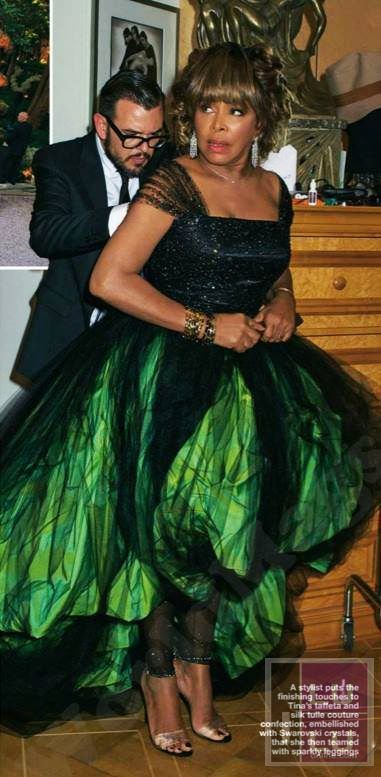 tina turner marries erwin bach - wedding album   tina turner