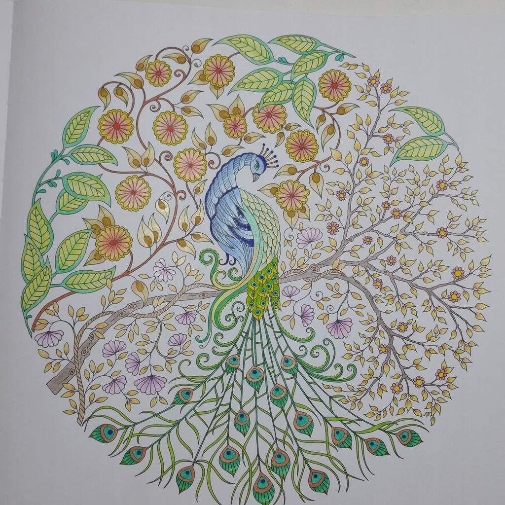 Coloriage issu du livre Jardin Secret Johanna Basford Art thérapie Gribouilleuse