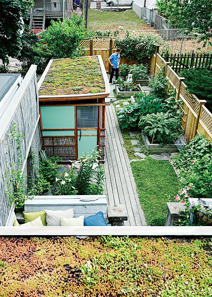 Boston Pops renovation small space with two green roofs.   Living ...