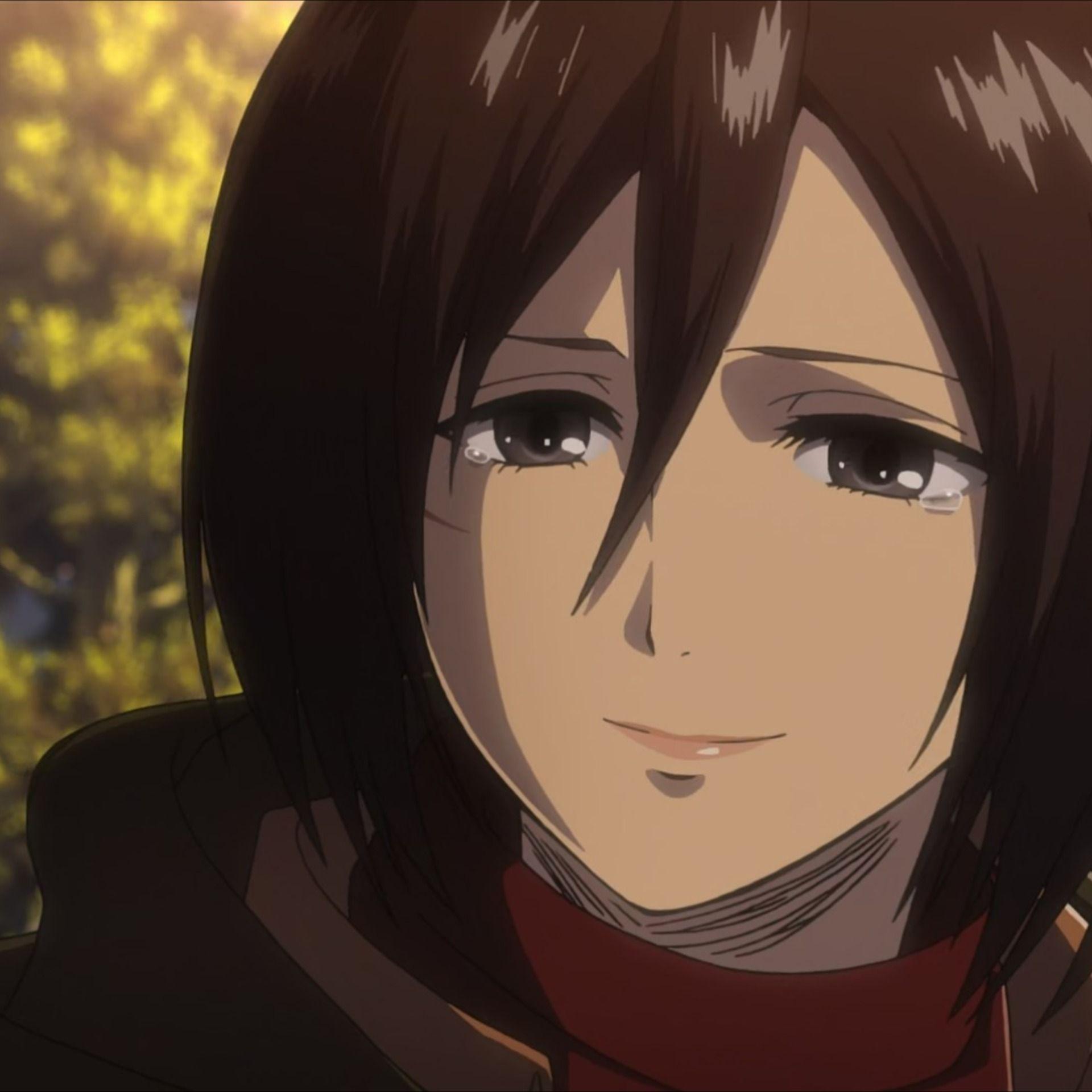 MIKASA IN SEASONS in 2020 Mikasa, Anime, Anime icons