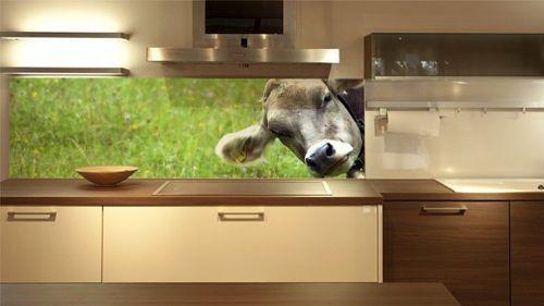 Wandpaneele Küche u2013 neues Design für die Küchenrückwand - küchenrückwand aus plexiglas