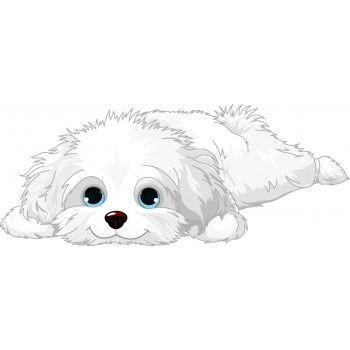 Cute White Fluffy Pup Perro